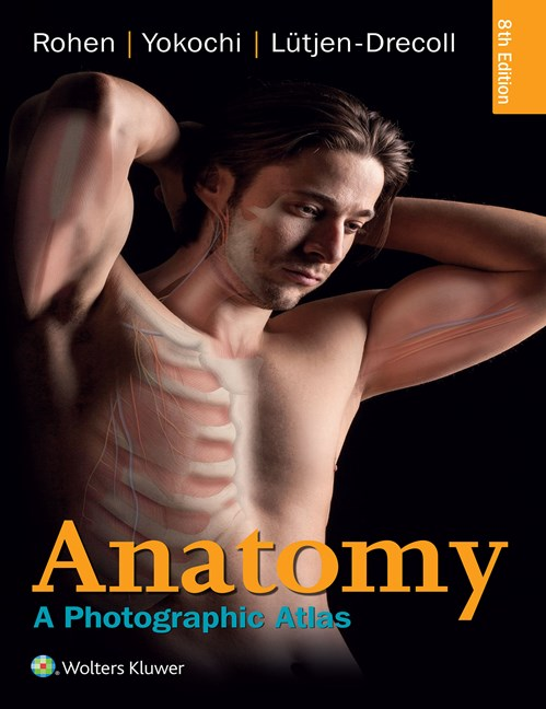 Rohen Anatomy A Photographic Atlas 2016